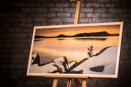 WINTER ON THE LAKE - WOOD (20X40 IN)