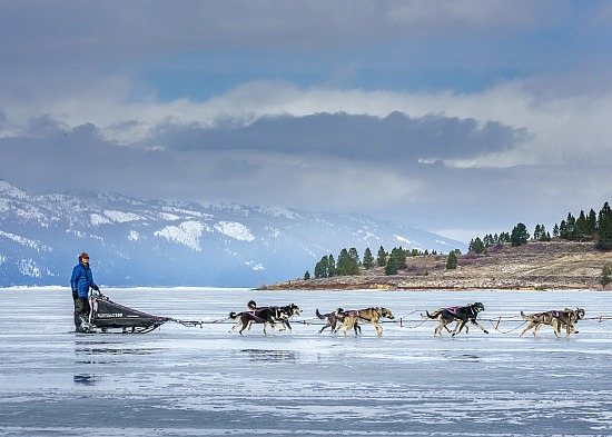 2018 SLED DOG RACE