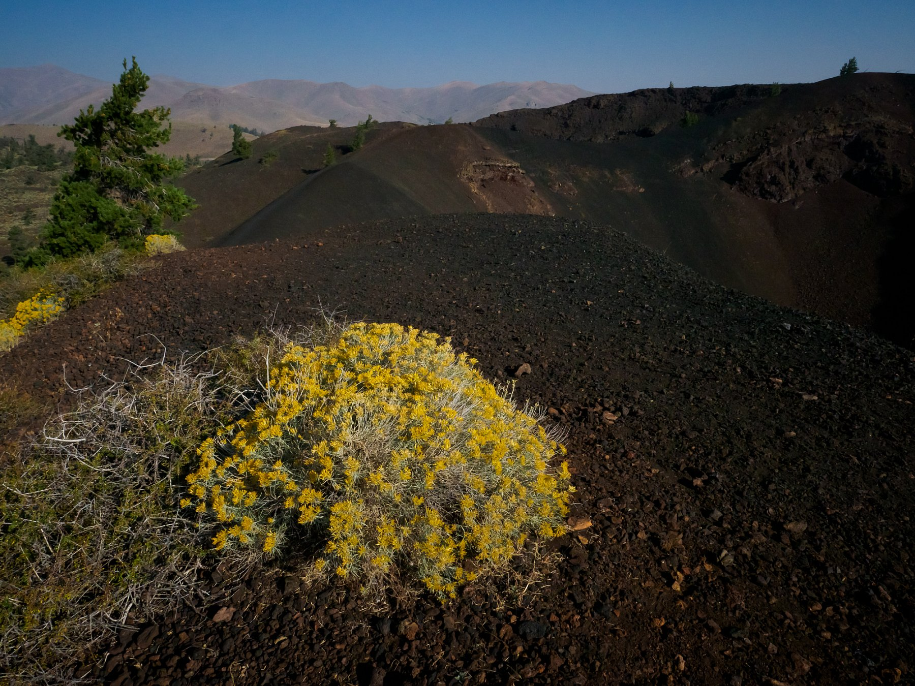 MLS-170911-CRATERS-9111954.jpg
